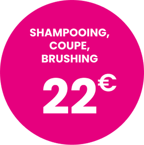 Shampoing, coupe, brushing : 22€*